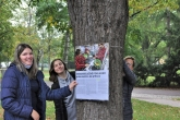 Výstava na stromech 2020