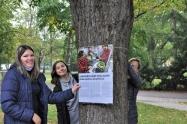 Výstava na stromech2 1600.jpg