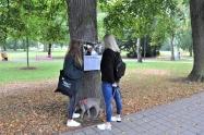 Výstava na stromech6 1600.jpg